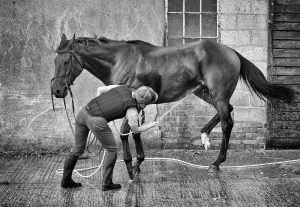 Racing-Stables-12_web