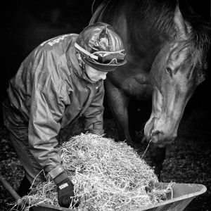 Racing-Stables-33_140513_web